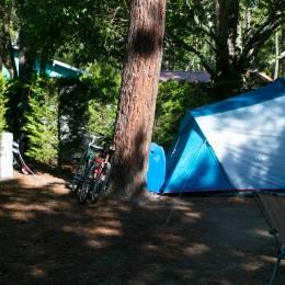 Emplacement de camping standard - Camping Le Domaine de la Marina